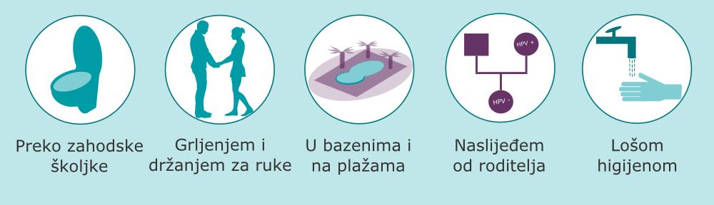HPVnePrenosi