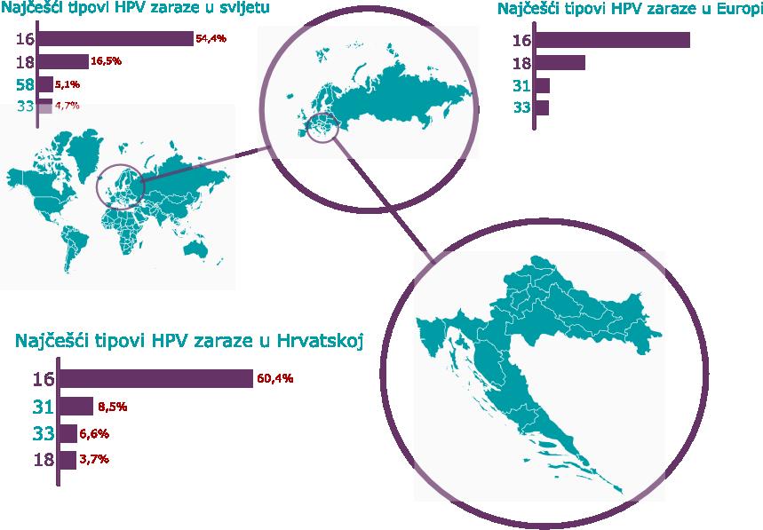 ucestalost HPV tipova_svijet_Eur_Hrv_plavo_ljubicasto